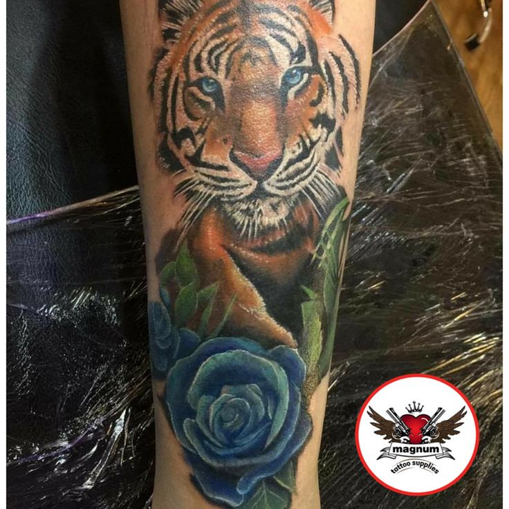 Tiger piece done by Mike C Davies Tattooer  created with #magnumtattoosupplies 👊👊