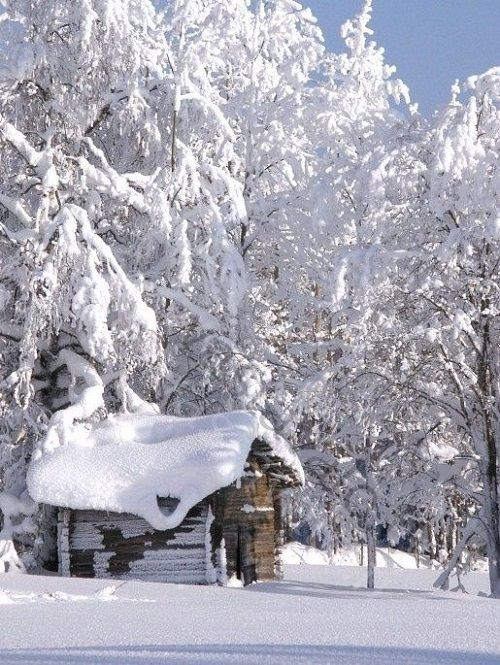 Snowed-in Cabin in the Woods - by Bonnie on Pinterest