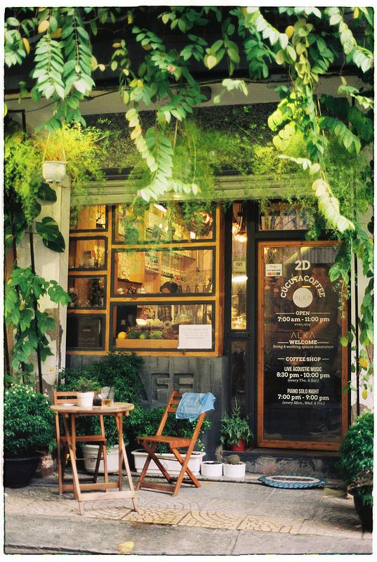 A garden landscape in a small space. Outdoor cafe