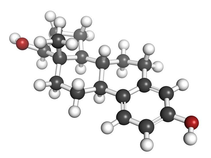 Een veel voorkomende hormonale disbalans, zowel bij vrouwen als bij mannen, is oestrogeendominantie. Volgens een Dr. Lam een Amerikaanse arts en onderzoeker loopt het percentage van de vrouwen van 35 jaar en ouder in het Westen met oestrogeendominantie al op naar de 50%. Wat is het precies, hoe ontstaat het, hoe weet je dat je het hebt en wat kun je doen om deze hormonen weer in balans te brengen? Dit zijn vragen die aan bod komen in dit artikel.