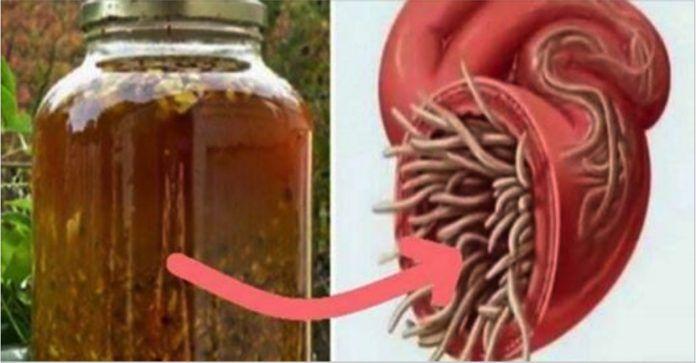 Najsilnejšie prírodné antibiotikum: Vylieči každú infekciu v tele a zničí všetky plesne a parazity.