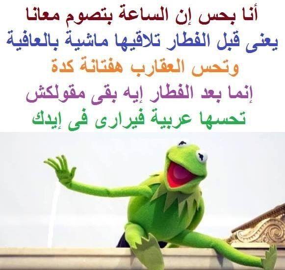 نكت نكت الضفدع شاهد اجمل نكت الضفدع كيرميت هتموتك من الضحك بالصور موقع مفيد لك Funny Picture Jokes Funny Dude Funny Arabic Quotes