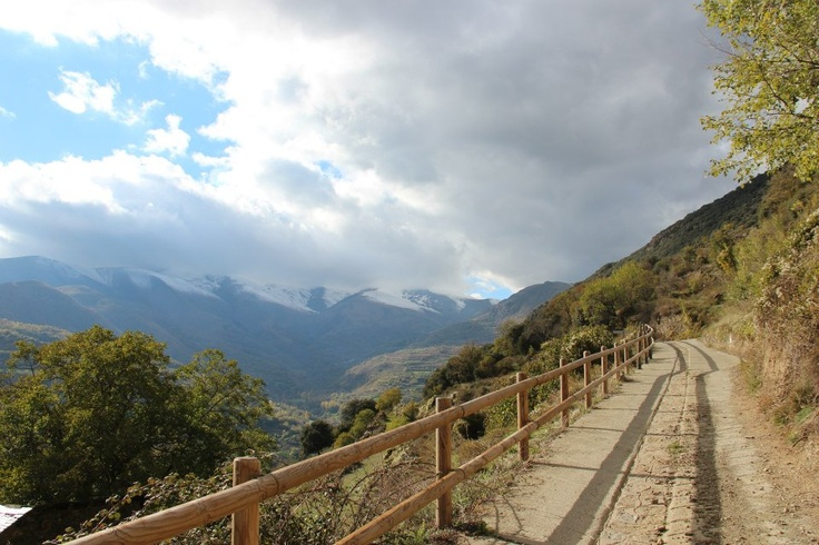 Surp, Pyrenees' natural silence