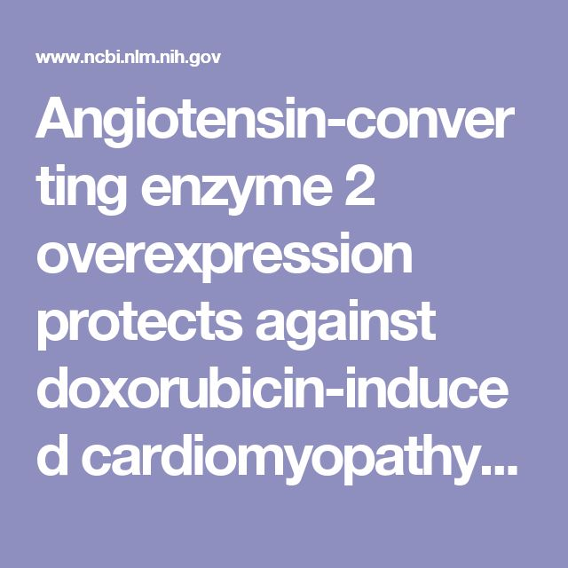 Angiotensin-converting enzyme 2 overexpression protects against doxorubicin-induced cardiomyopathy by multiple mechanisms in rats