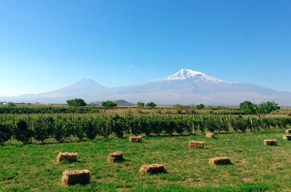 El Valle de Ararat, que da cuenta de la mayor parte de la producción agrícola de Armenia, está al borde de la desertificación por el despiadado uso de sus recursos hídricos, advirtió hoy Karine Danielyan, presidenta de la ONG Asociación para el Desarrollo Humano Sostenible.