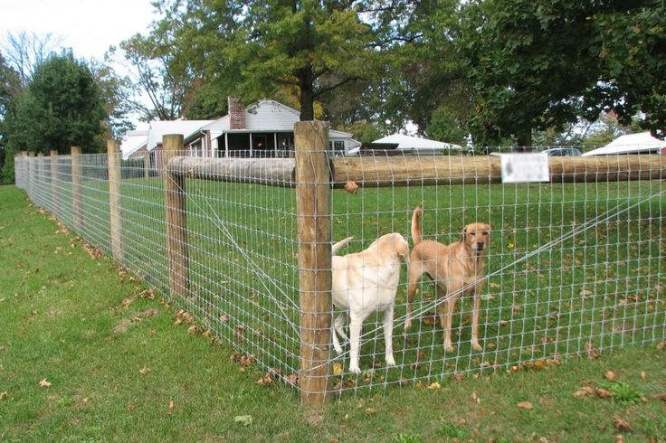 How much does it cost to fence a yard in 2020 dog fence