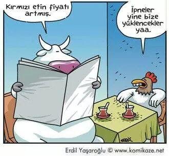 Karikatür:  - Kızmızı etin fiyatı artmış.  + İpneler yine bize yüklenecekler yaa.