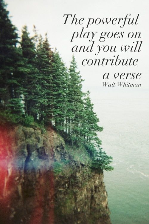 music & lyrics & words: Quote: Walt Whitman