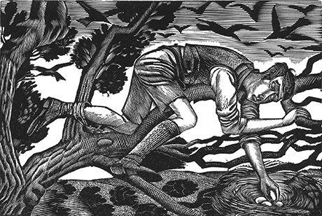 Boy Birdnesting, Eric Ravilious