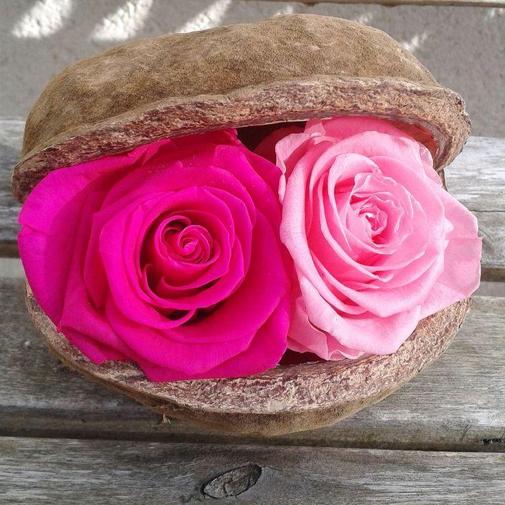 979 best f tez la saint valentin images on pinterest for Livrer une rose