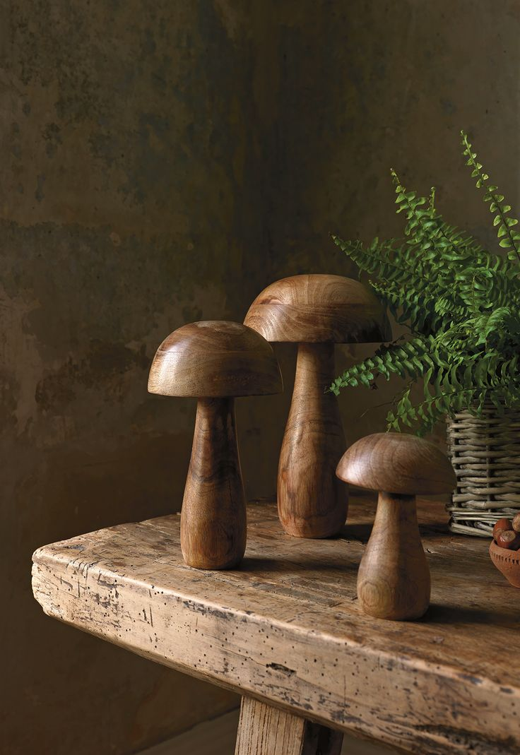 Bring the outdoors, indoors with these decorative mushroom ornaments.