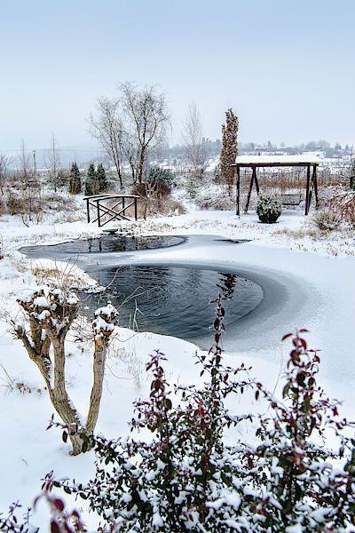 Zčeřená hladina. Rybníčky díky běžícím čerpadlům nezamrzají a jejich bublání příjemně oživuje posmutnělé zimní ticho.