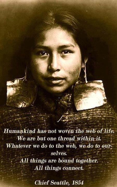 Chief Seattle...   Humankind has not woven the web of life.   We are but one thread within it.  Whatever we do to the web, we do to ourselves.   All thing are bound together.   All things connect.    I love this... what a beautiful thought!