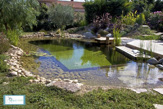 134 best images about artificial turf on pinterest - Piscine naturelle ...