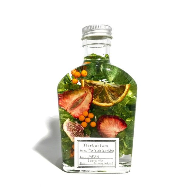FRUIT BOTTLE | Plante de la cuisine