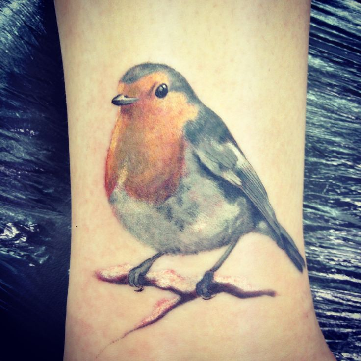 Robins are a classic symbol of spring. They symbolize new beginnings and they're song of spring is a familiar song. They're light hearted and jovial. They also remind us to let go of things that don't benefit us