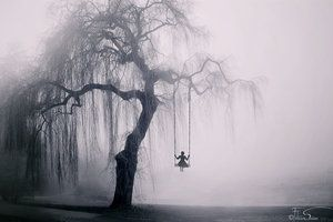 The Weeping Willow II by iNeedChemicalX (felicia, Romania). S)