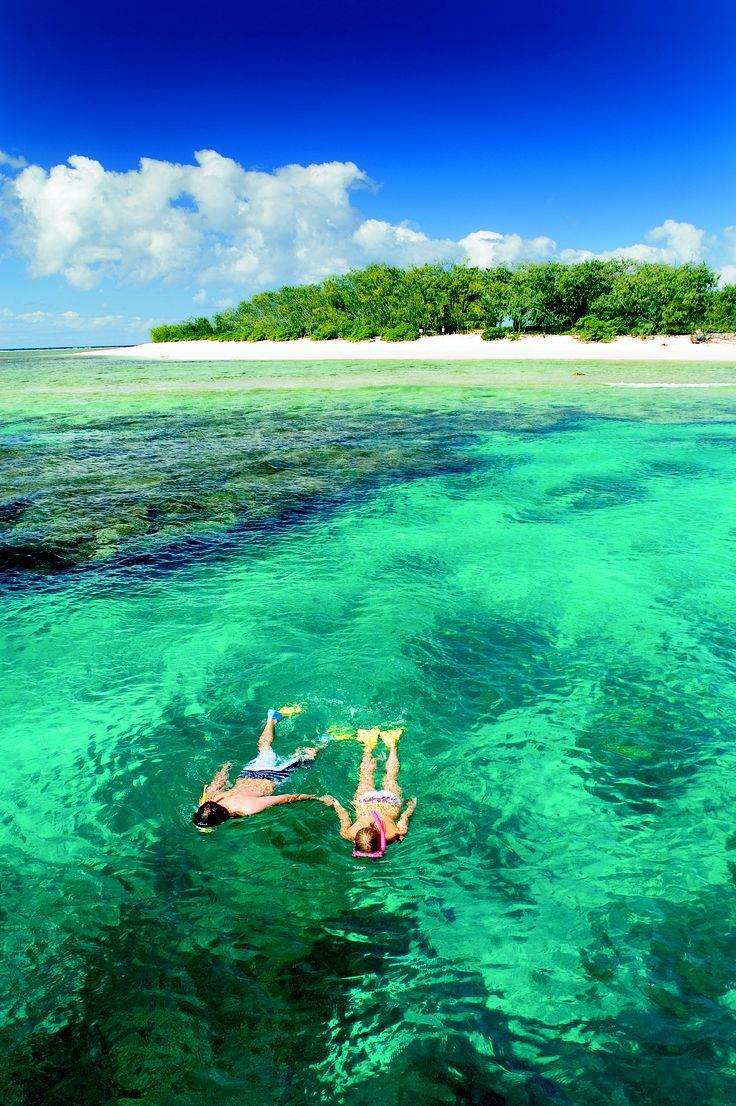 Lady Elliot Island – Snorkelling Great Barrier Reef, Australia