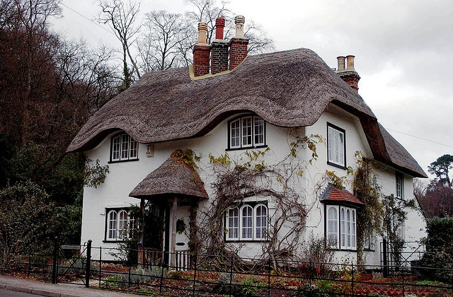 Thatched cottage in the New Forest Hampshire