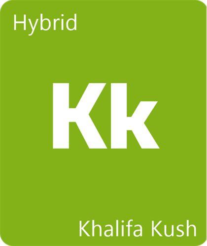 Khalifa Kush Strain Information - Leafly