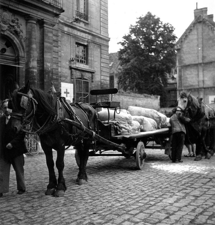 De la nourriture est apportée aux civils dont les maisons ont été bombardées et qui sont réfugiés dans l'église Saint Etienne. Les sacs de nourriture sont transportés sur un chariot, tiré par un cheval. Photo prise sur le parvis devant l'entrée du Lycée Malherbe, Place du Lycée qui deviendra Mgr des Hameaux en hommage à l'attitude du Doyen de St Etienne empreinte d'une grande humanité lors des bombardements de Juin et juillet 1944.  Au fond le mur de l'école Normale de fil...