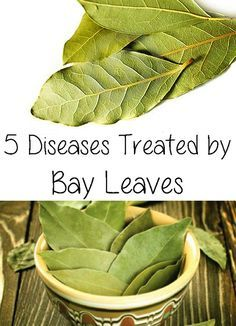 Bay leaves are famous for their aromatic flavor. They are used in many delicious recipes, but they also have many therapeutic proprieties.