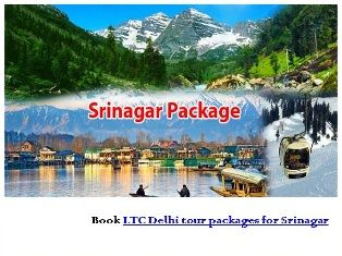 Enhance your experiences of Srinagar tourism with LTC Delhi tour packages for Srinagar by Mansi Travels. http://www.mansitravels.com/delhi_packages.html