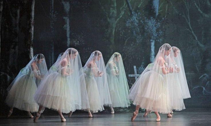 Mee naar Giselle in de Stopera  Het Evertshuis maakt het mogelijk om op donderdag 12 november mee te reizen naar de Klassiek Balletvoorstelling Giselle in de Stopera te Amsterdam.  Giselle is niet alleen een van de meest romantische werken uit het klassieke balletrepertoire het is ook een van de uitdagendste producties waar het gaat om het dramatische en emotionele inlevingsvermogen van de hoofdrolspelers. Niet voor niets staat het ballet bekend als de Hamlet van de dans. GISELLE wordt…