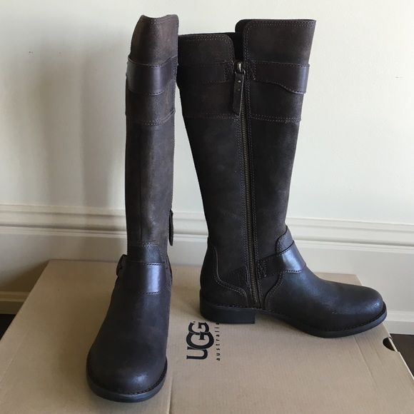 🌺🌺UGG Dalye tall boot Ugg classic zip up boots in dark brown...NEW in box. Lowest price of the season!!! Retail at $300 UGG Shoes Heeled Boots