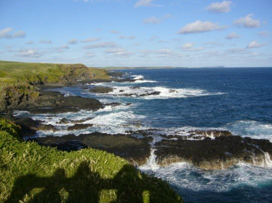 Things to Do on Phillip Island http://thingstodo.viator.com/melbourne/phillip-island-things-to-do/