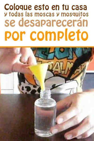 Coloque esto en tu casa y todas las moscas y mosquitos se desaparecerán por completo #moscas #mosquitas #repelente #DIY
