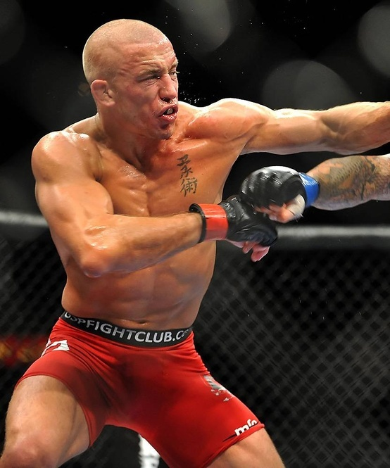 38 Best Images About MMA Fighter's On Pinterest