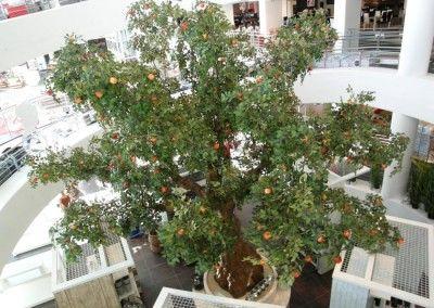 Große Kunstbäume für Messehallen, Einkaufscentren, Konzerthallen, Fernsehen und Events.