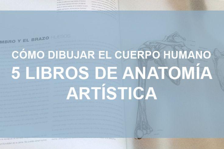 Breve análisis de 5 libros de anatomía artísca para que aprendas a cómo dibujar el cuerpo humano. Hay libros para todos los niveles, desde básico a avanzado. #anatomia #anatomiaArtistica #comoDibujar #cuerpoHumano #ComoDibujarElCuerpoHumano #libro #libroAnatomia #LibroAnatomíaArtistica #ilustración #dibujo