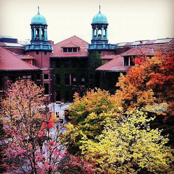 The University of Michigan's campus in the fall