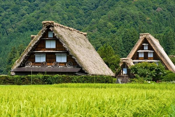 Vieilles maisons dans le village historique de Shirakawa-go