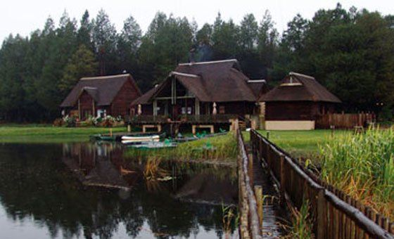 TWO-NIGHT stay for 4 incl. Breakfast & more at Lakenvlei Forest Lodge | Daddy's Deals