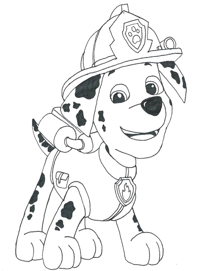 Paw Patrol Marshall Coloring Pages 304