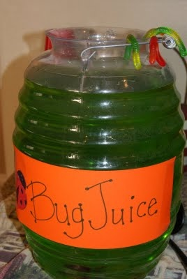 Bug juice for the Insect or Bug party!