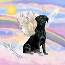 angel dogs | angel black labrador retriever angel by jean fitzgerald seller dog ...  My dog Chocolate passed away today she is now in Heaven RIP