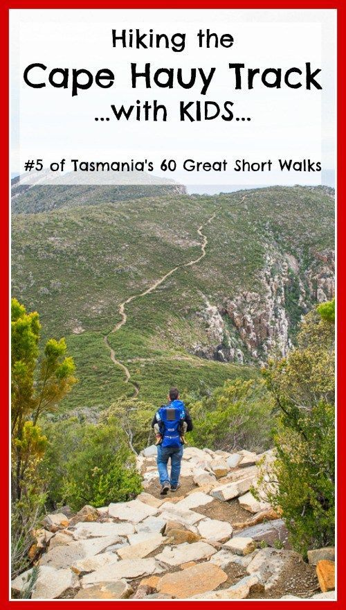 Hiking the Cape Hauy Track with Kids.  This is number 5 of Tasmania's 60 great short walks. #hikingwithkids #tasmania