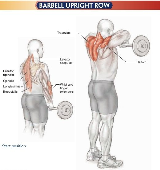 Resistance Bands Upright Row: Best 25+ Upright Barbell Row Ideas On Pinterest