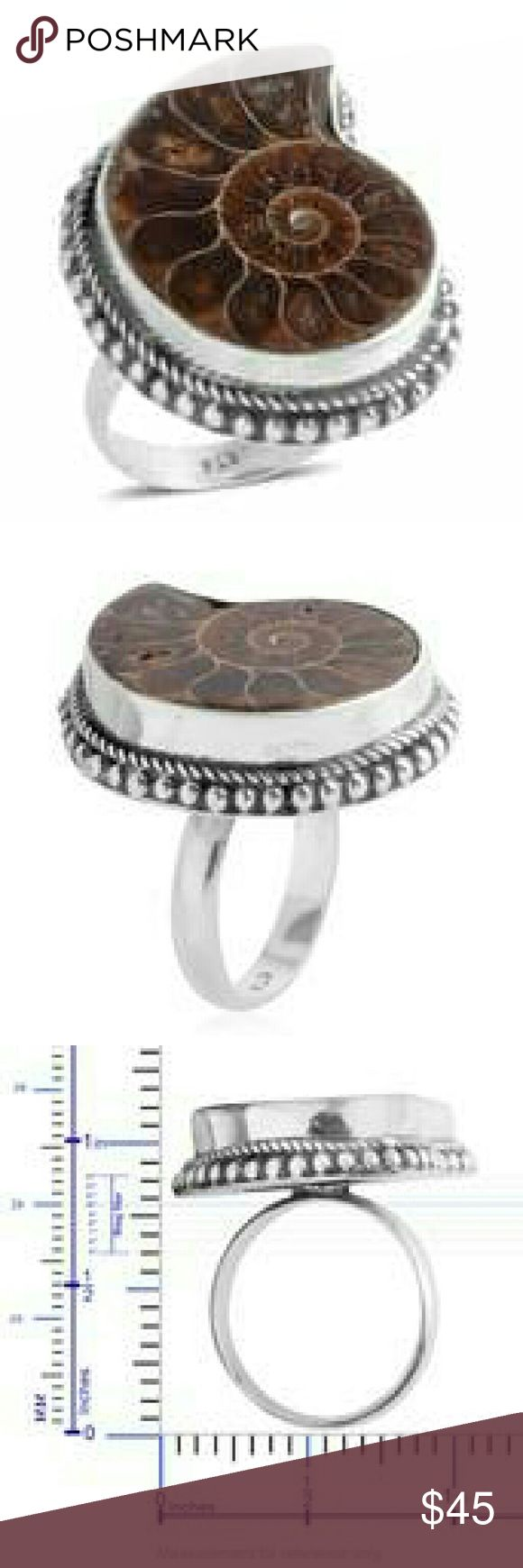 🎄NEW🎄BALI HANDCRAFTED STERLING SILVER RING BALI LEGACY COLLECTION HANDCRAFTED GENUINE AMMONITE STERLING SILVER / NICKEL FREE RING TCW -22.00 BALI LEGACY COLLECTION Jewelry Rings