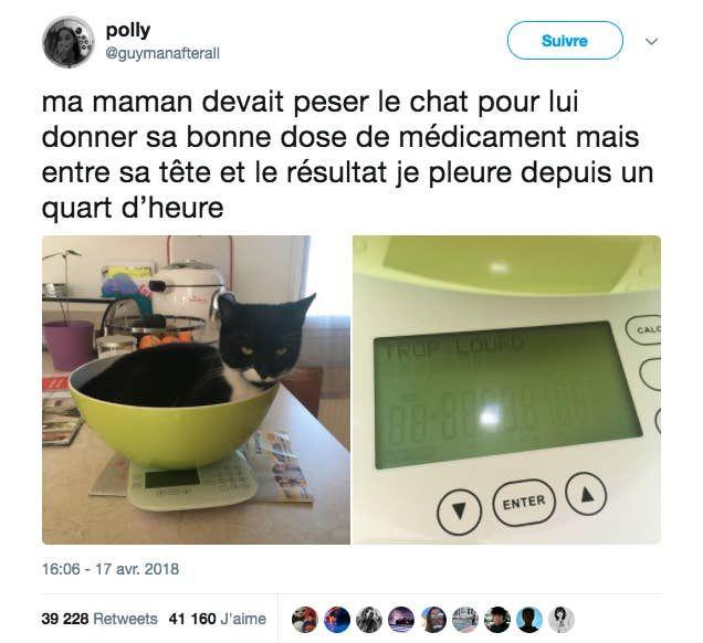 19 Tweets Qui Ont Eu Tellement De Retweets Qu Ils Vont Vous Faire Rire Jusqu A Plus Soif In 2020 Funny Facts Silly Jokes Jokes