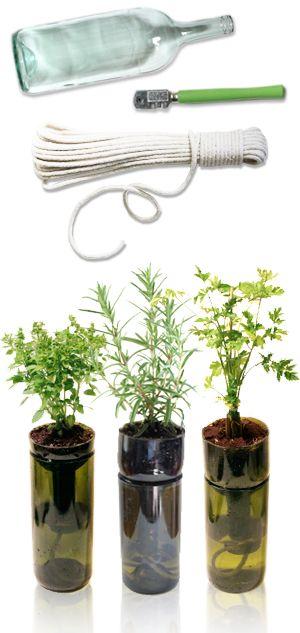 Plantas auto regadas com vasos feitos de garrafas | Self Watering Planters out of wine bottles