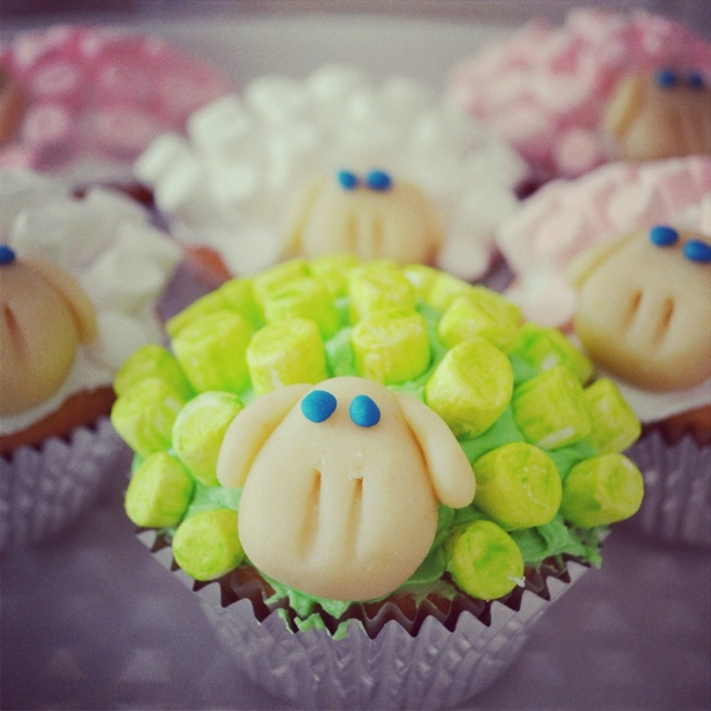 Where is the Green Sheep? Cupcakes by me!!! :)