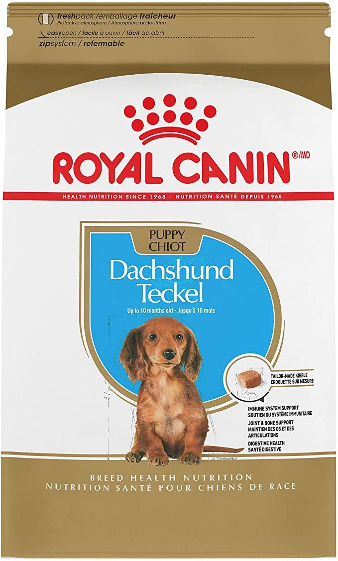 Amazon Com Royal Canin Dachshund Puppy Breed Specific Dry Dog Food 2 5 Lb Bag Pet Supplies Dry Dog Food Dog Food Recipes Dachshund Puppy