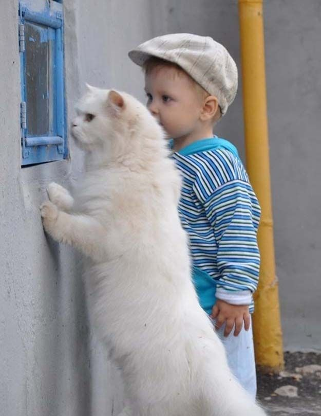 The day this kid and his cat decided to plot their escape together …