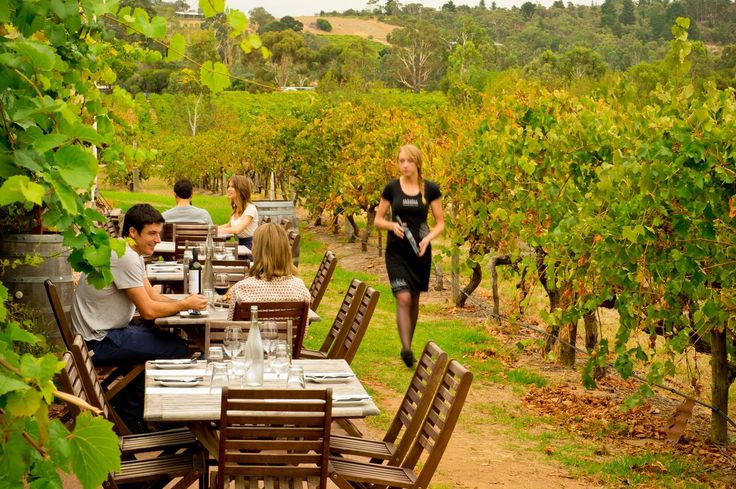 Adelaide Hills, winery