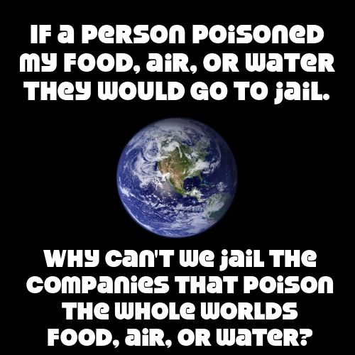 If a person poisened my food, air, or water, they would go to jail. Why can't we jail the companies that poison the whole world's food, air, and water?